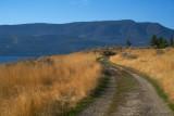 Mount Royal #2