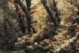 A Bit of Color Muddy Creek