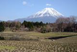 富士山 - Mt.Fuji