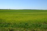 Belarus May17 446.jpg