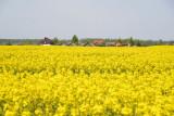 Belarus May17 546.jpg