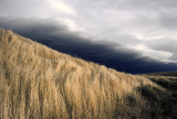 Grasslands and Storm Front