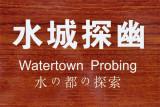 Watertown Probing