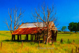 Derelict house in rural Australia