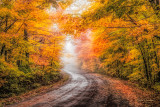 ***86.71 -  Sawtooth Mountains: Colorful Autumn Road On Rainy Day