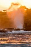 Suzan McEvoy - Splash 11.jpg