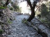 Day 3 Barranc de biniaraix cobbled trail