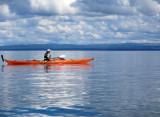 Jun 17 Kayaking between Cromarty sutors with guillimots