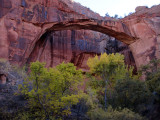 Escalante natural bridge