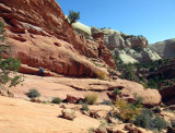 There is a nice scramble slickrock section to gain the rim of the canyon