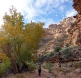 Day 3 - Dark canyon