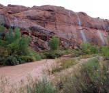 Swollen Escalante river after the rains
