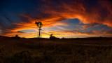 Windmill Sunset (Composition #3)