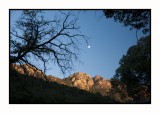 16 11 11 110 Madera Canyon Santa Rita Mountains