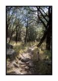 16 11 13 145 Madera Canyon