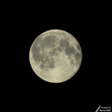 Full Moon / Pleine lune