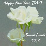 01-01-2018 : Happy New Year 2018! / Bonne Année 2018!