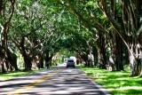 SE Bridge Road Hobe Sound Florida 058
