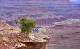 Life on the Edge of Shafer Canyon in Canyonlands National Park Moab Utah 116