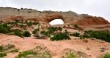 Wilson Arch nearby Moab Utah 184