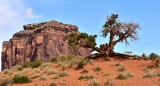 No Hiking at Merrick Butte Monument Valley Navajo Tribal Park 478