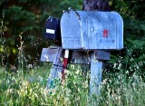Mailboxes on Occidental Road Occdental California 155