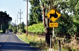 Caution Farm Vechile in Sonoma County California 240