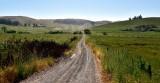 Dirt Road 314
