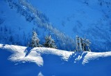 Gather on the Ridge in the Cascade Mountains 204