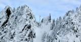 Life on the edge nearby Ragged Ridge Cascade Mountains Washington 246