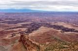 White Rim Buck Canyon Colorado River Hatch Point Canyonlands National Park Utah 510