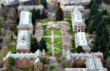 University of Washington, Cherry Blossoms at The Quad, Seattle Washington 564a