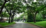 Driveway to Grand Wailea Hotel, Maui, Hawaii 056