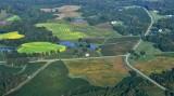 Landscape in rural Virginia 320
