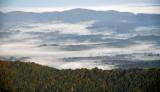 Morning fog in Corzet valley, Virginia 065