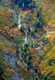 Fall colors in Salmon Creek, Cascade Mountains, Washington 206