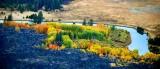 Fall along the Deschutes River near Sunriver, Oregon 283