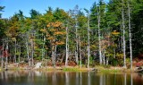 Last of fall foliage on pond by Witch Spring Road, Bath Maine 1052