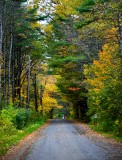 Looking down Barnes Point Road, Harpswell, Maine 141