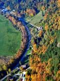 Fall foliage along the Duvall Monroe Road NE in Snoqualmie River Valley, Duvall, Washington 114