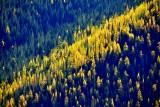 Autumn in Eastern Washington 880