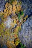 Fall in Cascades 533
