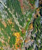 Autumn on Snowgrass Mountain, Cascade Mountains, Washington 534