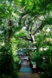 Kehei Kalama Village 121