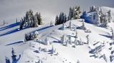 Gathering on the Ridge, Cascades Mountain, Washington 300