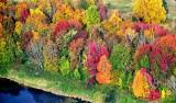 Fall Foliage along Highway 2, Monroe 405a
