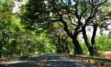 Honoapilani Highway 30, Lahaina, Hawaii 013