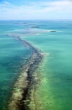 Cross Bank, Florida Bay, Everglades National Park, Plantation Key, Florida 122