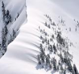 Heavy Snow on Liberty Mountain, Washington 306