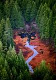 Fall Colors on Deep Creek, Washington State 115a